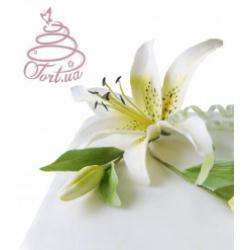 Торт на заказ «Праздничная лилия»