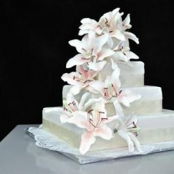 Вариант Свадебного торт10