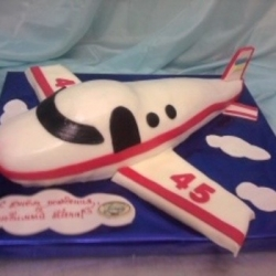 Торт  Самолёт 1