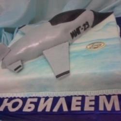 Торт Самолёт 2
