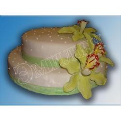 Торт на день рождения №10