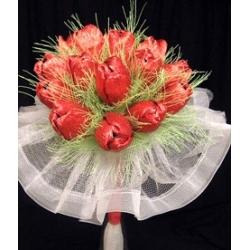 Тюльпани 1