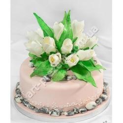 Торт 127