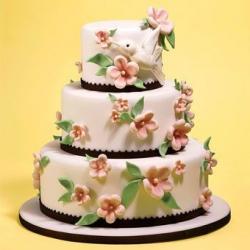 Свадебный торт 27: заказать, доставка
